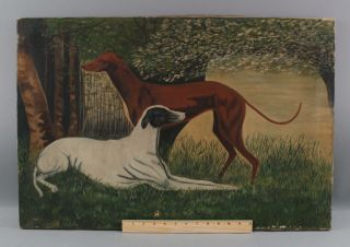 19thc Antique Signed American Folk Art Greyhound Or Whippet Dog Oil Painting,  Nr