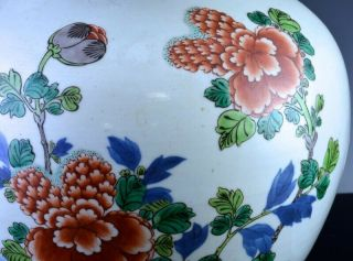 PAIR 19THC CHINESE BLUE WHITE WUCAI ENAMEL BIRD LANDSCAPE MEIPING VASES 11