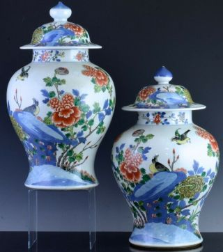 Pair 19thc Chinese Blue White Wucai Enamel Bird Landscape Meiping Vases