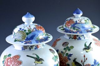 PAIR 19THC CHINESE BLUE WHITE WUCAI ENAMEL BIRD LANDSCAPE MEIPING VASES 5