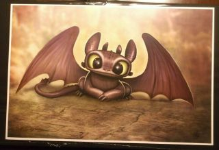 Nathan Szerdy Signed 12x18 Signed Art Print Toothless How To Train Your Dragon