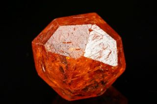 Extraordinary Gem Orange Spessartine Garnet Crystal Loliondo,  Tanzania