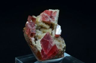 Rhodochrosite W/ Quartz - Sweet Home Mine,  Alma,  Colorado