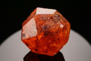 Gem Orange Spessartine Garnet Crystal Loliondo,  Tanzania