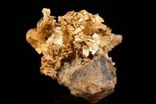 Rare Old Native Gold Crystal Cluster Dixie Mine,  Colorado