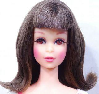 Stunning Vintage Brunette High Color Bendable Leg Francie Doll