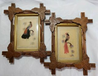 Vtg Feather Craft Bird Pictures Hand Carved Wood Frame Mexican Folk Art 60s Pair
