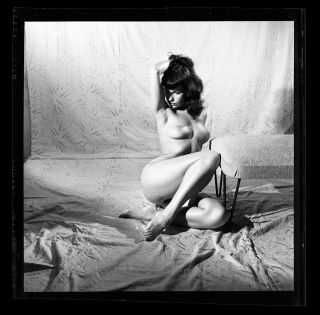 8.  Rare Bettie Page 1954 Camera Negative Photo Bunny Yeager Nude Pin Up