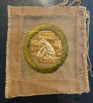 Boy Scout First Aid To Animals 1 1911 - 1919 Merit Badge (type Aa) Oversized Gpoc