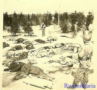 Sad Us Troops View Field Filled W/ Prisoners Executed By Retreating Germans
