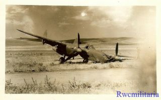 Org.  Photo: Crash Landed P - 38 Fighter Plane Nose Down In Field (2)