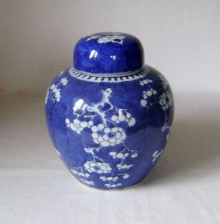 Large Antique Chinese Prunus Porcelain Vase With Lid 20 Cm High Ginger Jar