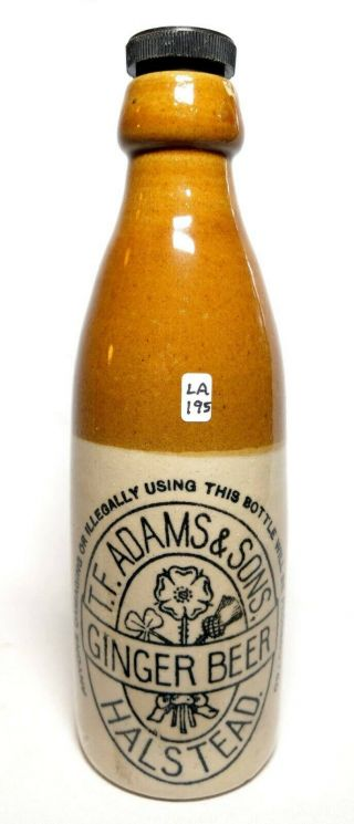 Victorian Stoneware Ginger Beer - T.  F.  Adams & Sons,  Halstead