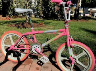 Skyway Street Beat Freestyle Bike Bmx Old School Vintage 80's Award Winning Bike