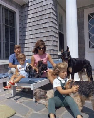 President John F.  Kennedy And Family With Dogs At Hyannis Port - 8x10 Photo